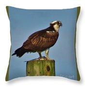 Osprey With His Catch Throw Pillow