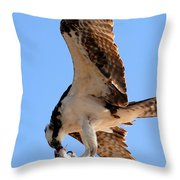 Osprey's Catch Throw Pillow