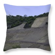 Osterspai Vineyards Throw Pillow