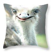 Ostrich Grin Throw Pillow