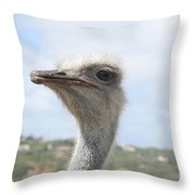 Ostrich Head II Throw Pillow