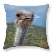Ostrich Head Throw Pillow
