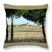 Otero Throw Pillow