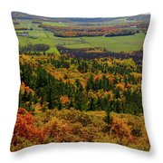 Ottawa River Valley In Fall At Tawadina Lookout At End Of Blanch Throw Pillow