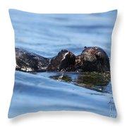 Otter Bliss Throw Pillow