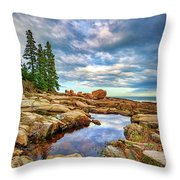 Otter Point Reflections Throw Pillow