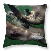 Otter Traffic Jam Throw Pillow