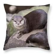 Otters In Arms Throw Pillow