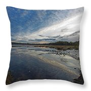 Otters View Throw Pillow