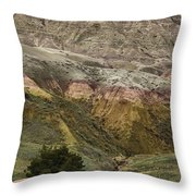 Our Beautiful World Throw Pillow