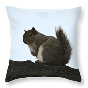Our Squirrel Chubby Throw Pillow