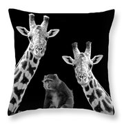 Our Wise Little Friend - Monkey And Giraffes In Black And White Throw Pillow