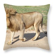 Out For A Stroll Throw Pillow