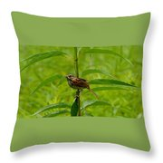Out For Lunch Throw Pillow