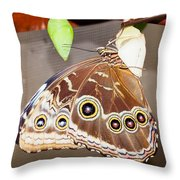 Out From Chrysalis Throw Pillow