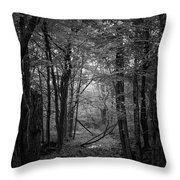 Out From The Darkness Throw Pillow