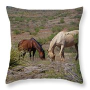 Out In The Open Range Throw Pillow