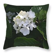 Out In The Wilds Throw Pillow