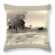 Out In The Wind Throw Pillow