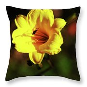Out Of Darkness Into Light Throw Pillow