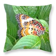 Out Of Hiding Throw Pillow