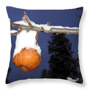 Out Of Season Throw Pillow