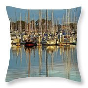 Out Of The Ordinary Throw Pillow