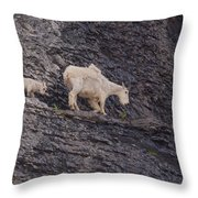 Out On A Ledge Throw Pillow