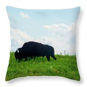 Out On The Range Throw Pillow