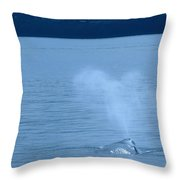 Out The Blow Hole  Throw Pillow