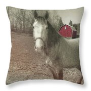Out To Pasture Throw Pillow