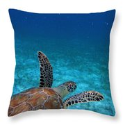 Out To Sea Throw Pillow by Kimberly Mohlenhoff