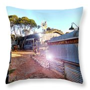 Outback Oasis Throw Pillow