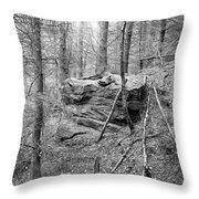 Outcrop, Woods, Dipton Burn Throw Pillow