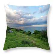 Outlook Throw Pillow