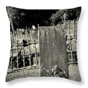 Outside The Gate Throw Pillow