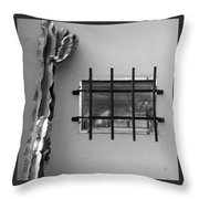 Outsiders - Cactus By The Window Throw Pillow