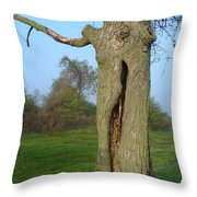 Outstanding In Her Field Throw Pillow