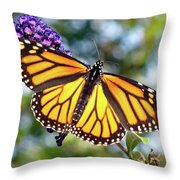 Outstretched Monarch Throw Pillow