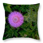 Over A Thistle Throw Pillow