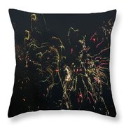 Over Fort Lee Throw Pillow