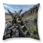 Over Ridley Common Throw Pillow