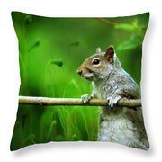 Over The Fence Full Color Throw Pillow
