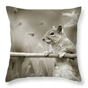 Over The Fence In Black And White Throw Pillow