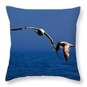 Over The Gull We Go Throw Pillow