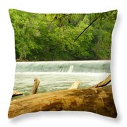 Over The Trunk Throw Pillow