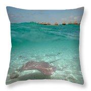 Over-under Water Of A Stingray At Bora Bora Throw Pillow