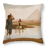 Overflow Of The Nile Throw Pillow