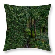 Overgrown Brook Throw Pillow