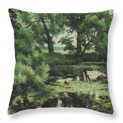 Overgrown Pond Throw Pillow